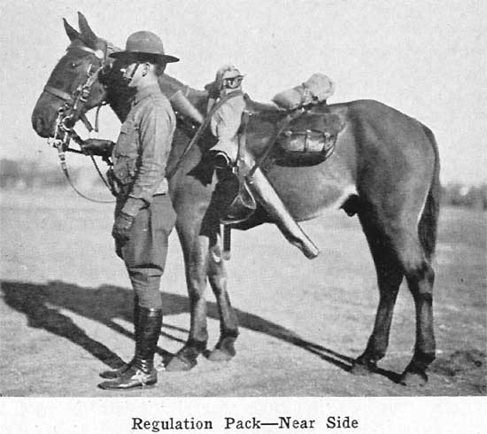 The McClellan Saddle and Its Proposed Modifications - The