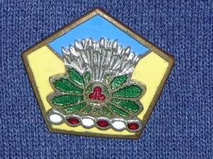 54th Cavalry Brigade HQ