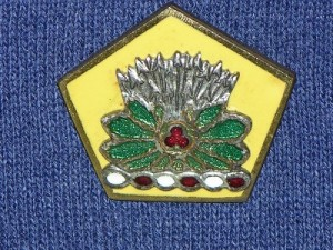Another version of the 54th Cav. Bde.